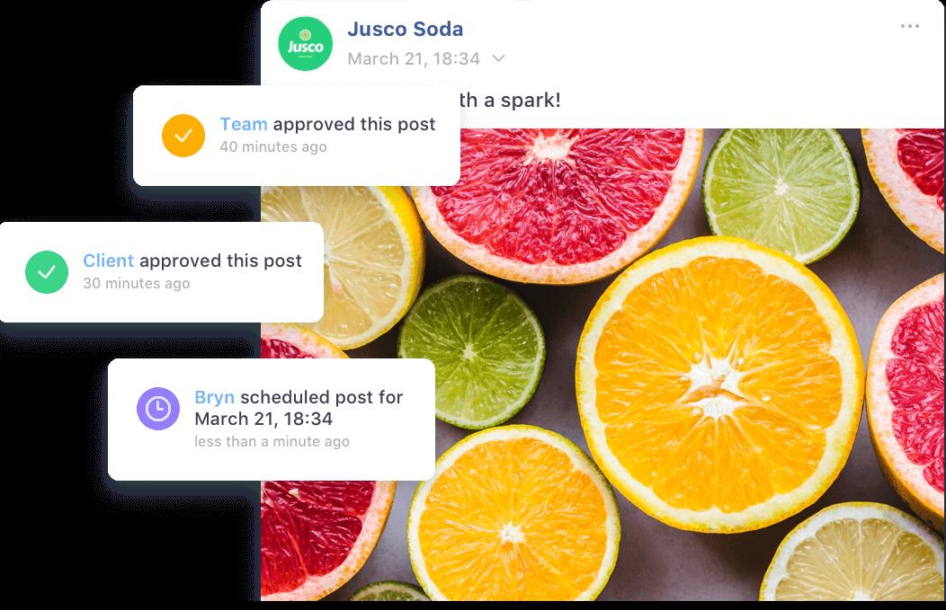 social media collaboration tool
