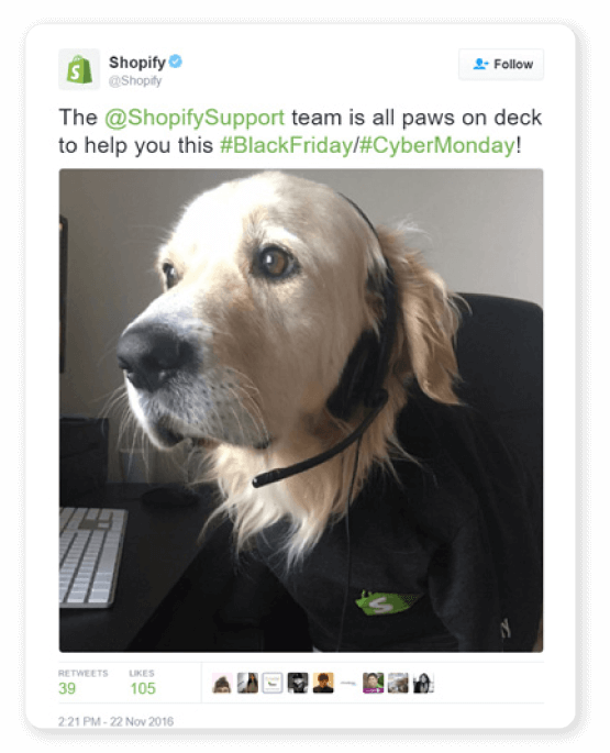 Shopify. All paws on deck commercial